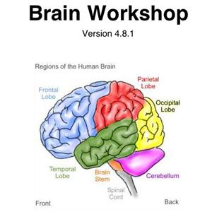 brainworkshop-icon
